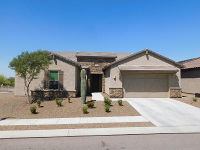 Marana Single Family Home For Sale: 4374 W Summit Ranch Place