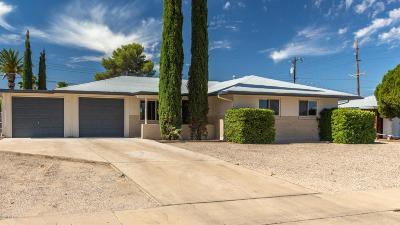 Tucson Single Family Home For Sale: 6310 E Calle Mercurio