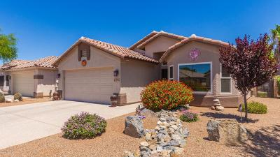 Pima County Single Family Home For Sale: 2594 W Summits End Court