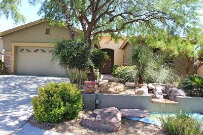 Sahuarita Single Family Home For Sale: 862 E Gunsight Mountain Place