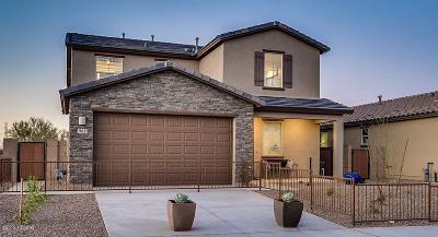 Single Family Home For Sale: 15618 S Camino Oculi S
