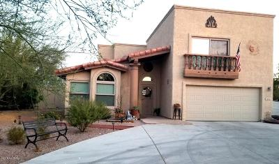 Tucson Single Family Home For Sale: 6171 N Panorama Place