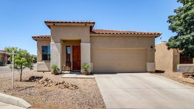 Green Valley Single Family Home For Sale: 309 E Calle Criba