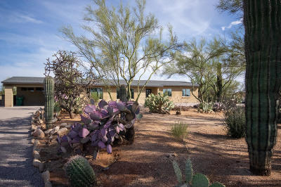 Tucson Single Family Home For Sale: 2471 W Rapallo Way