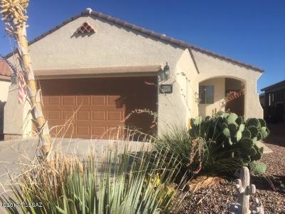 Pima County Single Family Home For Sale: 347 W Calle Moncayo