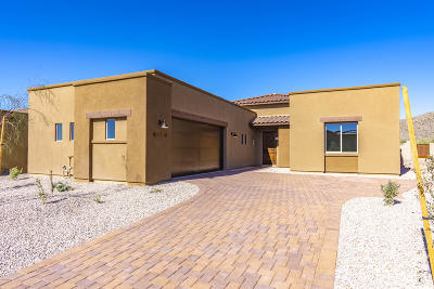 Marana Single Family Home For Sale: 6740 W Red Hawk Place