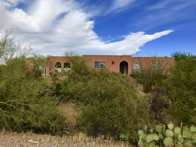 Tucson Single Family Home For Sale: 2060 N Painted Hills Road