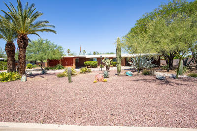 Pima County Single Family Home For Sale: 521 S Essex Lane