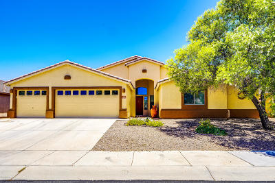 Marana Single Family Home For Sale: 12574 N Stone Pillar Drive