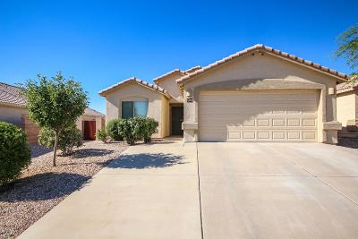 Vail Single Family Home For Sale: 509 E Cactus Mountain Drive