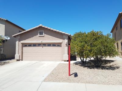 Pima County, Pinal County Single Family Home For Sale: 7681 E Fair Meadows Loop