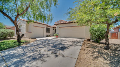 Marana Single Family Home For Sale: 12667 N Maize Drive