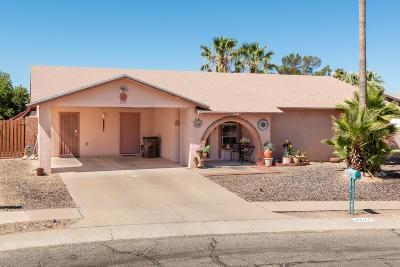 Tucson Single Family Home For Sale: 4031 W Plantation Street