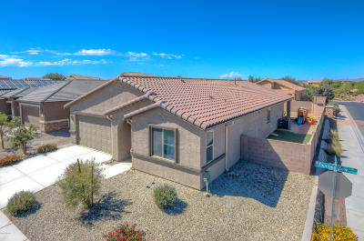 Marana Single Family Home For Sale: 11112 W Fountain View Drive