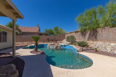 Marana Single Family Home For Sale: 12884 N Fresnal Canyon Road