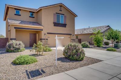 Marana Single Family Home For Sale: 11564 W Fayes Glen Drive