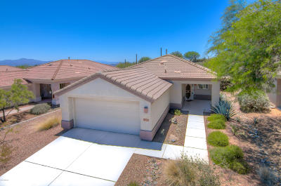 Marana Single Family Home For Sale: 13455 N Heritage Canyon Drive