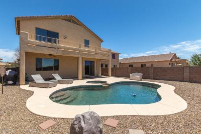 Single Family Home For Sale: 10698 S Kush Canyon Lane