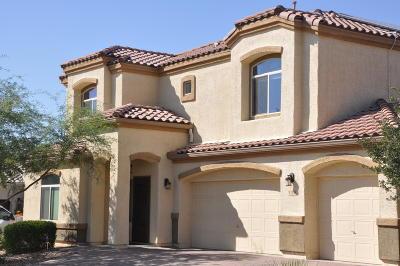 Marana Single Family Home For Sale: 9708 N Saguaro Breeze Way