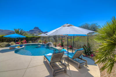 Tucson Single Family Home Active Contingent: 8113 N Night Pony Drive