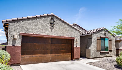 Oro Valley Single Family Home For Sale: 11044 N Delphinus Street