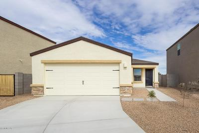 Pima County Single Family Home For Sale: 4077 E Braddock Drive