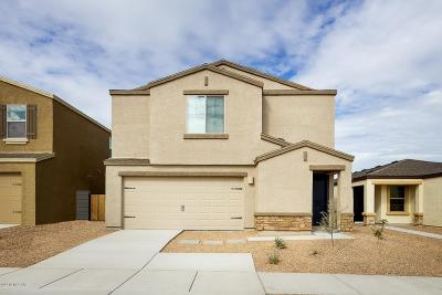 Tucson Single Family Home For Sale: 4096 E Braddock Drive