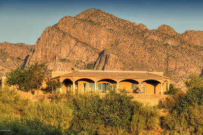 Oro Valley Single Family Home For Sale: 10835 N Summer Moon Place