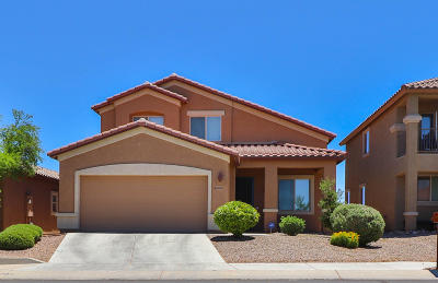 Pima County, Pinal County Single Family Home For Sale: 8969 S Mystic Meadow Road