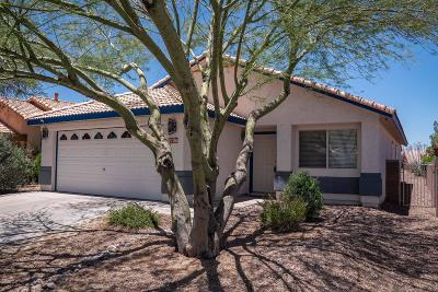 Single Family Home Active Contingent: 7730 S Titanite Lane