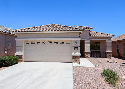 Pima County Single Family Home For Sale: 1300 W Camino Buenos Aires