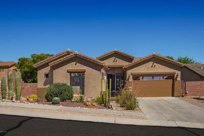Marana Single Family Home For Sale: 13154 N High Hawk Drive