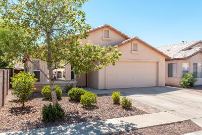 Pima County Single Family Home For Sale: 2948 N Gold Creek Place