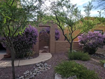 Tubac Single Family Home For Sale: 238 Market Circle