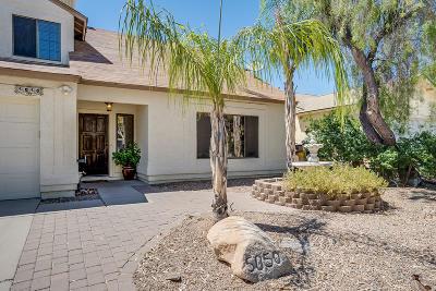 Pima County Single Family Home For Sale: 5050 W Nighthawk Way