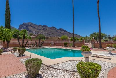 Tucson Single Family Home For Sale: 105 E Linda Vista Boulevard