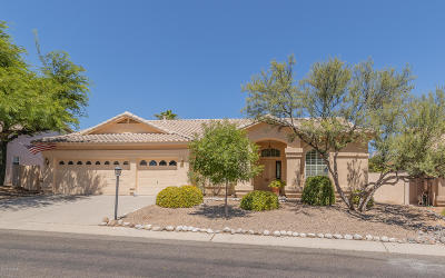 Oro Valley Single Family Home For Sale: 11128 N Mountain Breeze Drive