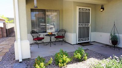 Pima County Single Family Home For Sale: 8890 S Desert Valley Way