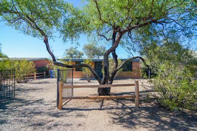 Pima County Single Family Home For Sale: 1521 E Spring Street