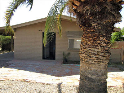 Pima County Single Family Home For Sale: 2665 N Leah Place