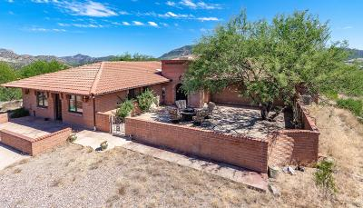 Patagonia Single Family Home For Sale: 47 N Sonoita Drive