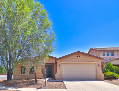 Pima County Single Family Home For Sale: 9510 N Sammy Avenue