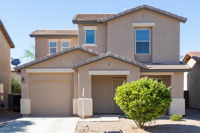 Pima County Single Family Home For Sale: 4275 E Parting Waters Way