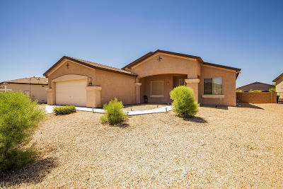 Pima County Single Family Home For Sale: 8384 W Calle Sancho Panza