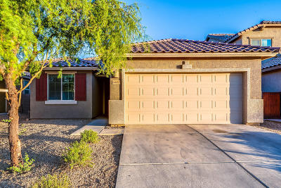 Tucson Single Family Home For Sale: 6887 W Red Snapper Way