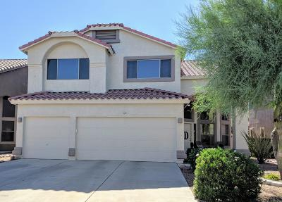 Pima County Single Family Home For Sale: 525 E Camino Del Abeto