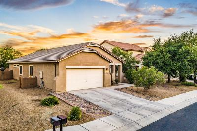 Marana Single Family Home For Sale: 11309 W Harvester Drive