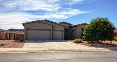 Tucson Single Family Home For Sale: 8501 N Ironwood Reserve Way