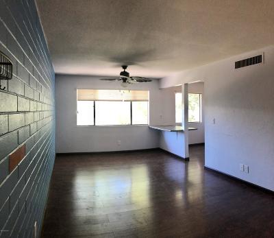 Tucson Condo For Sale: 1324 S Avenida Polar #D-206