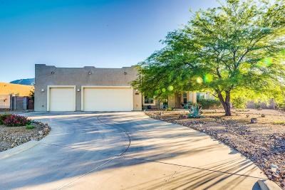 Sierra Vista Single Family Home Active Contingent: 4248 S Hackberry Drive